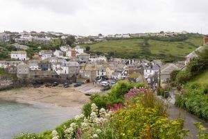 Port Isaac, dog friendly beach in north Cornwall.